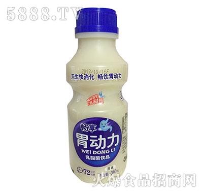 畅享胃动力原味乳酸菌340ml