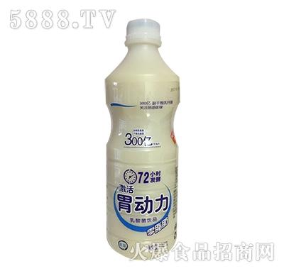 激活胃动力乳酸菌饮品