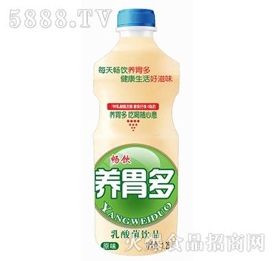 畅饮养胃多原味乳酸菌饮品1.25L