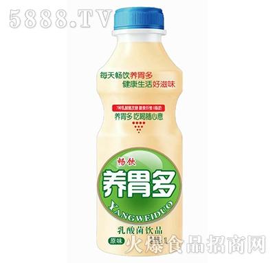 畅饮养胃多原味乳酸菌饮品1L