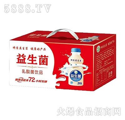 帅盾益生菌乳酸菌饮品箱装