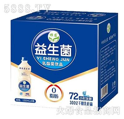 帅盾益生菌乳酸菌饮品箱装1250ml瓶