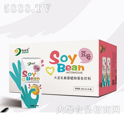 九缘大豆乳酸菌植物蛋白饮品250mlx12盒原味钻石包