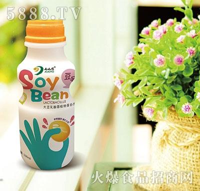 九缘大豆乳酸菌植物蛋白饮品330ml原味