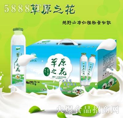 草原之花纯野山杏仁植物蛋白饮料