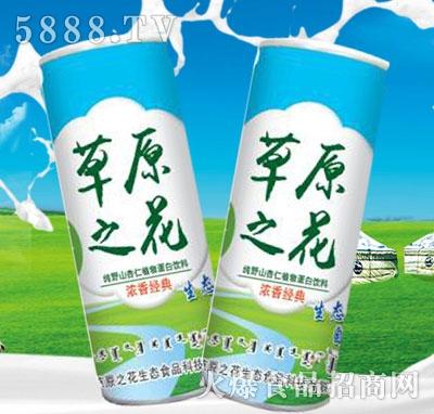 草原之花纯野山杏仁植物蛋白饮料(罐)