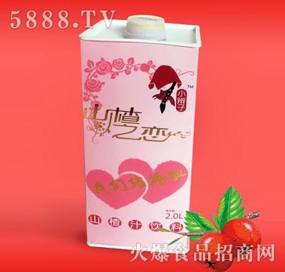 2L塑料瓶山楂汁