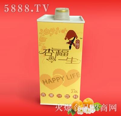 2L塑料瓶杏汁