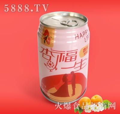 280ML易拉罐杏汁