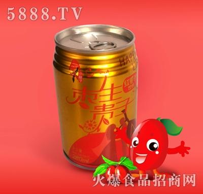 345ML玻璃瓶红枣汁