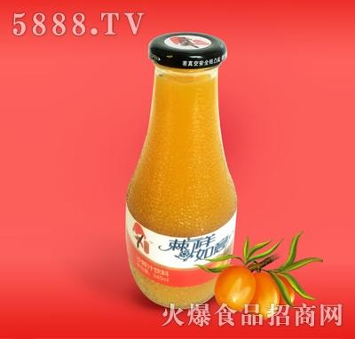 345ML玻璃瓶沙棘汁