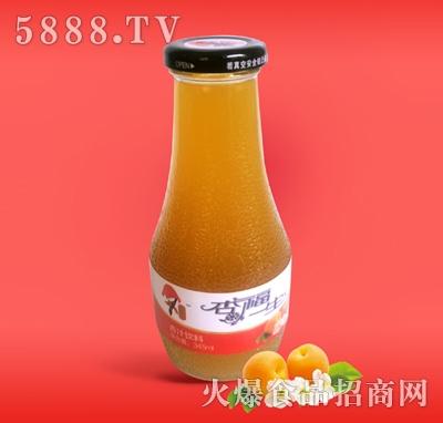 345ML玻璃瓶杏汁