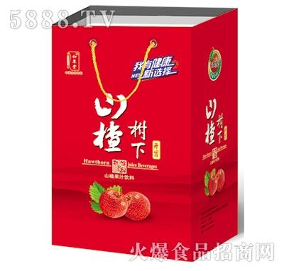 山楂树下果汁饮料礼盒装500ml