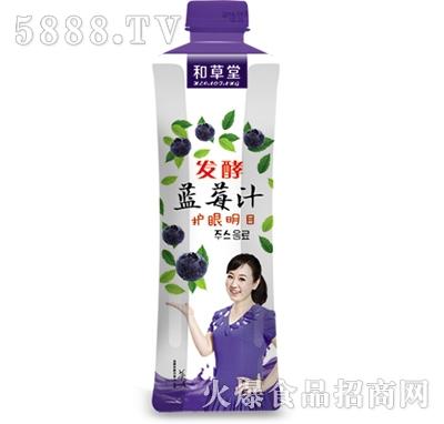 和草堂发酵型蓝莓汁480ml