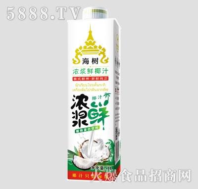 海树浓浆鲜椰汁1L