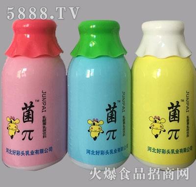 菌π乳酸菌饮品