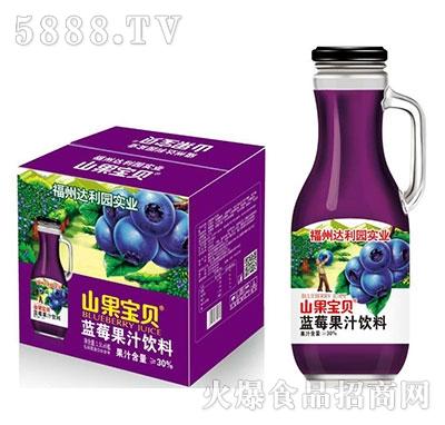 山果宝贝蓝莓汁饮料1.5Lx6瓶