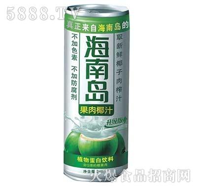 海南岛果肉椰子汁植物蛋白饮料245g