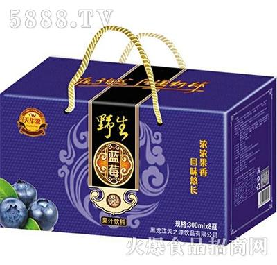 天华源野生蓝莓果汁饮料300mlx8瓶