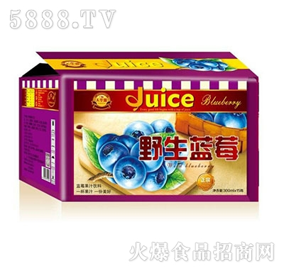 天华源野生蓝莓果汁饮料300mlx15瓶