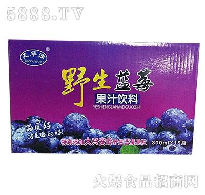 天华源野生蓝莓果汁饮料300x15瓶