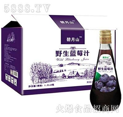 天华源野生蓝莓汁果汁饮料1.5Lx8瓶