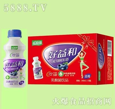 好益和乳酸菌饮品蓝莓味340mlx12