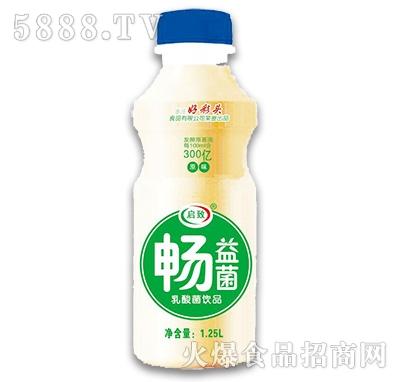 启致畅益菌乳酸菌饮品1.25L