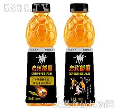 启致能量牛磺酸型维生素功能饮料600ml