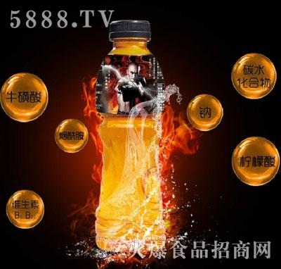 魔狮维生素饮料(瓶)