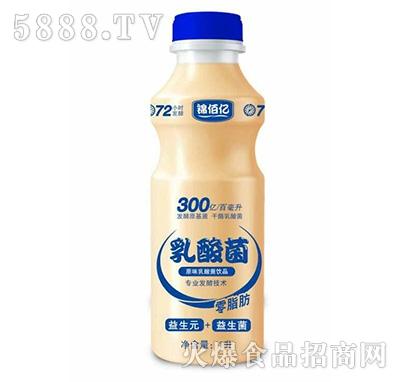 锦佰亿乳酸菌饮品原味1L