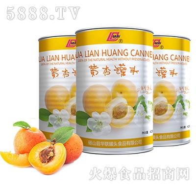砀联黄杏罐头