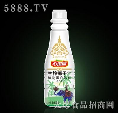 500ML心滋园泰式生榨椰子汁产品图