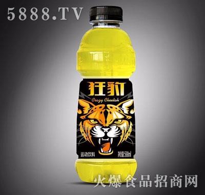 狂豹运动饮料588ml