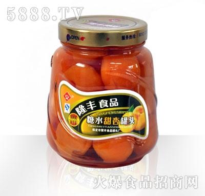 隆丰800g甜杏罐头