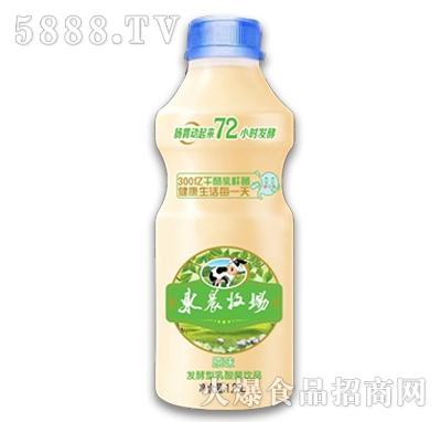东辰牧场发酵型乳酸菌饮品1.25L