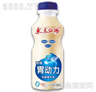 东辰牧场乳酸菌饮品340ml