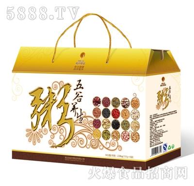 南农养生粥礼盒