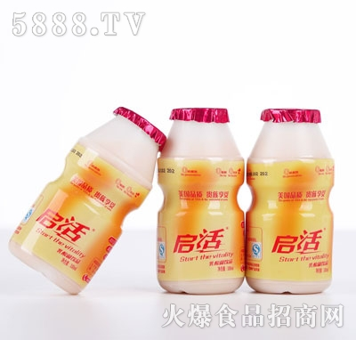 启活乳酸菌饮品100ml