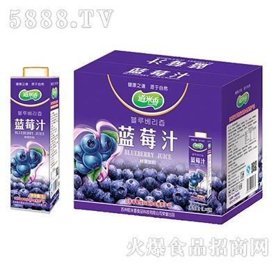 道米香蓝莓汁鲜果饮料--0元招代理