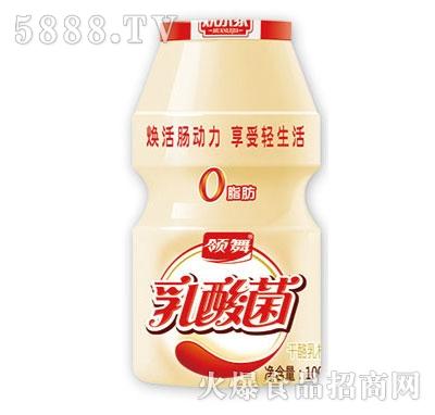 领舞乳酸菌饮料100ml