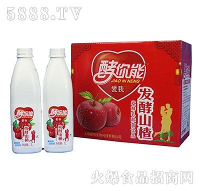 发酵山楂乳酸菌饮料