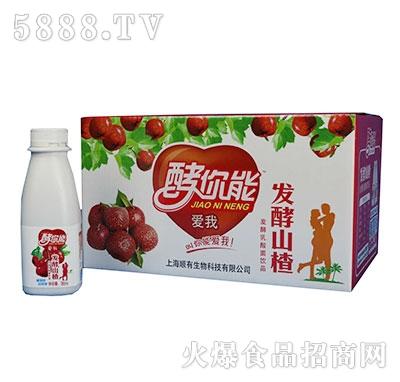 发酵山楂乳酸菌饮品