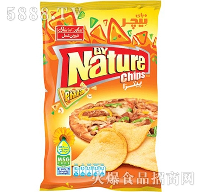nature披萨薯片