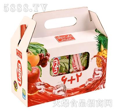 Liona果汁礼盒手提