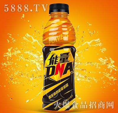 能量dna维生素饮料600ml产品图