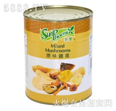 海山混合菇罐头产品图