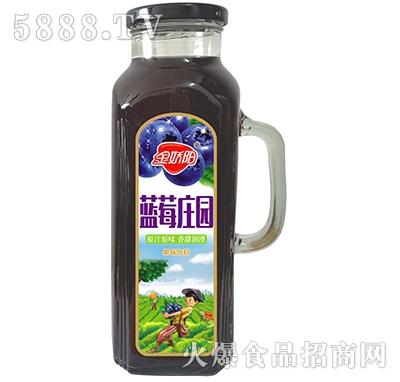 金娇阳蓝莓庄园果味饮料1L