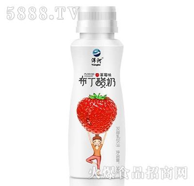 洋河布丁酸奶草莓味发酵乳饮品340g