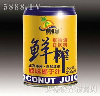 鲜榨原味椰子汁250ml